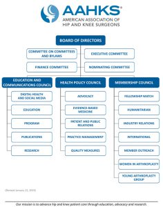 council and committee structure