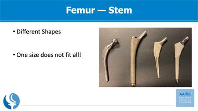 a photo of femur, stem implants